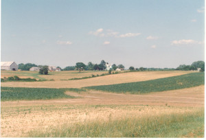 A photograph of the Thompson Farm on Davidsonville Road at Gambrills, where one of the old Linthicum homes is located and was where the senior Thompsons lived. Once part of the Snowden estate at the head of South River, where the resident farmers for the Snowdens resided. Kermit Thompson, who married Betty Donaldson (Chief Wiley's sister), grew up in this old home.