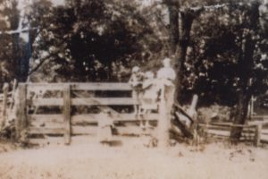 Bowie children on fence at Grassland. It is believed that most, if not all, of the following remaining of twenty-two (22) photographs were taken during the decades of the 1920s and/or1930s at Grassland or even earlier, in some cases.