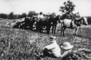 "John Bowie, Jr., with his sister, Susannah Frances Bowie Baldwin, when they were young, watching the hay being ""brought in"" at Grassland."